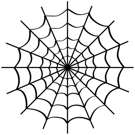 Spider web on white background Illustration