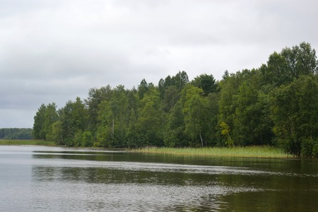 isthmus: Lake shore on a cloudy day. Karelian Isthmus.