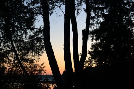 isthmus: Sunset at forest in the Karelian Isthmus, Russia.