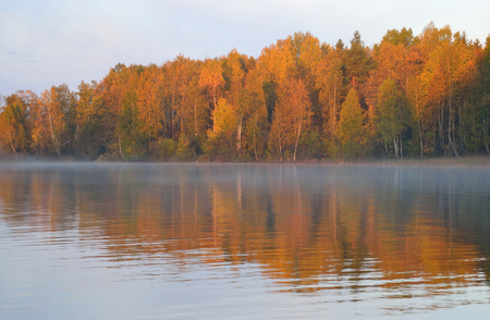 isthmus: Autumn forest on the shore of Kavgolovskie Lake at sunrise, Karelian Isthmus, Russia. Stock Photo