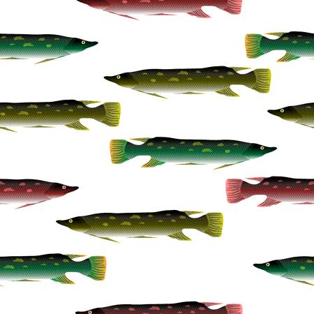 Pike seamless pattern on white background. Stock Photo