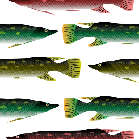 pike: Pike seamless pattern on white background. Stock Photo