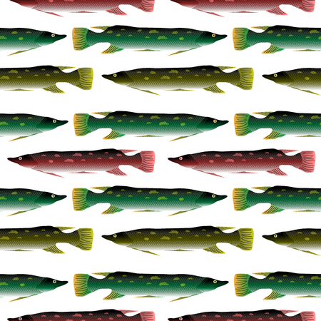 luce: Pike seamless pattern on white background. Stock Photo