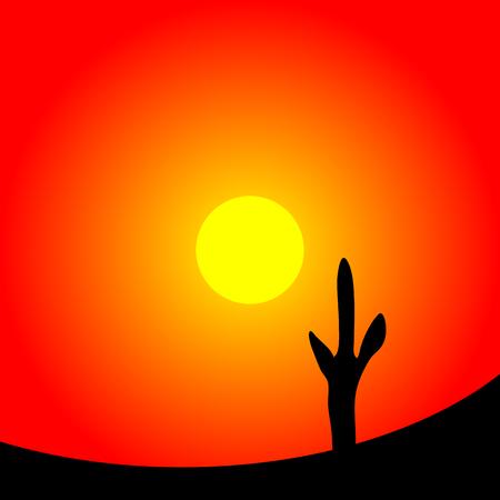 Desert sunset with cactus plants. Vector illustration. Illustration