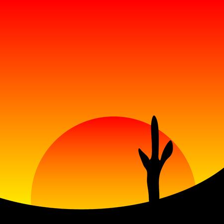 desert sunset: Desert sunset with cactus plants. Vector illustration. Illustration