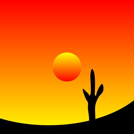 arizona sunset: Desert sunset with cactus plants. Vector illustration. Illustration