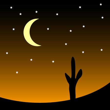 barren: Desert with cactus plants at night. Vector illustration.