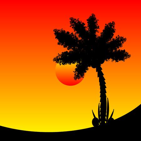 naranja arbol: Palmera en la puesta del sol tropical. Ilustración del vector.