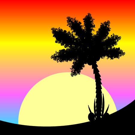 isles: Palm tree at tropic sunset. Vector illustration.