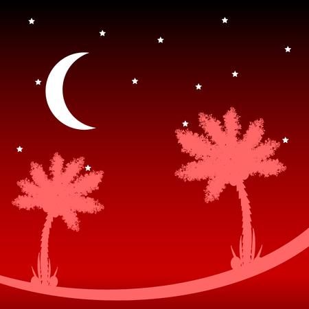 isles: Palm tree at tropic night Vector illustration. Illustration