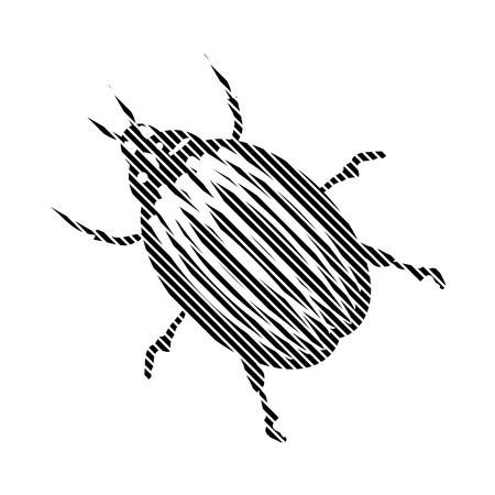 invertebrate: Bug sign on white background. Vector illustration.