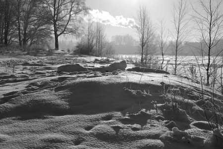 snowscene: Winter landscape with trees at sunny day. Black and white.