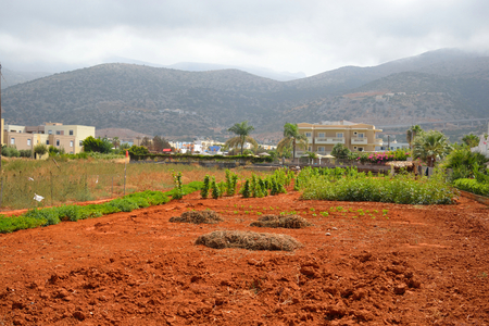 arable land: View of red arable land, Malia town and mountain on Crete island, Greece.