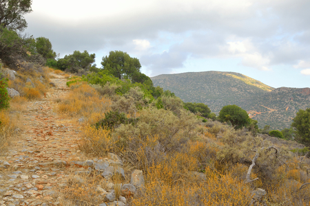 rout: Summer landscape with old mountain road in Crete, Greece. Stock Photo