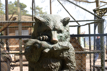 devouring: ST.PETERSBURG, RUSSIA - 14 MAY, 2016: Statue of a bear devouring fish in district Komarovo on the outskirts of St. Petersburg. Editorial