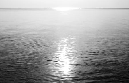 ladoga: Ladoga lake at sunny day, the Karelian Isthmus. Black and white.