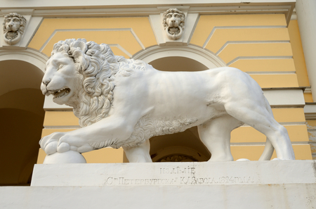 peterburg: Lion statue near State Russian Museum in St.Petersburg, Russia.