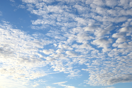 altocumulus: Blue sky and altocumulus clouds, may be used as background.