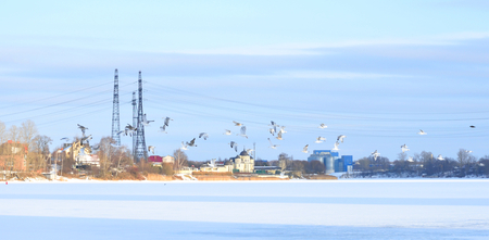 View of Neva River on the outskirts of St. Petersburg at cloud winter day, Russia.