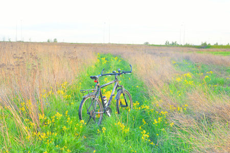 ST.PETERSBURG, RUSSIA - 19 MAY, 2016: Mountain biking in the field at summer by evening.