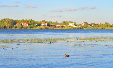 View of Neva River on the outskirts of St. Petersburg at sunny summer evening, Russia. Stock Photo