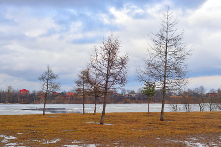 Early spring park at cloud day, Russia.