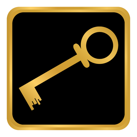 Key button on white background Vector illustration.