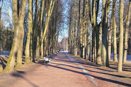 Park alley at spring in Primorsky Victory Park, St.Petersburg, Russia.
