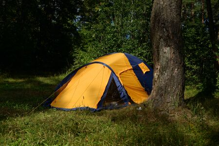 Camping tent in forest in the Karelian Isthmus, Leningrad region, Russia. Stockfoto