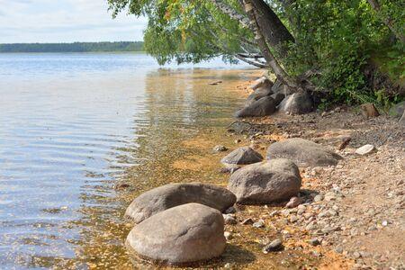 Coast of lake at sunny day in Karelian Isthmus, Leningrad region, Russia. Stockfoto