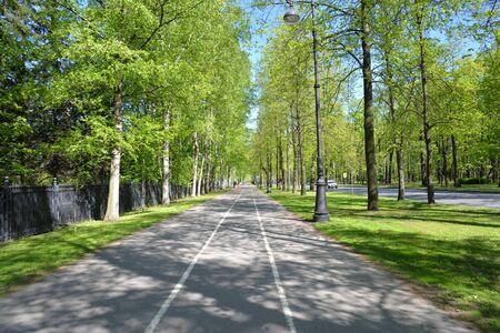 Bike path in park on Krestovsky Island in Saint Petersburg, Russia.