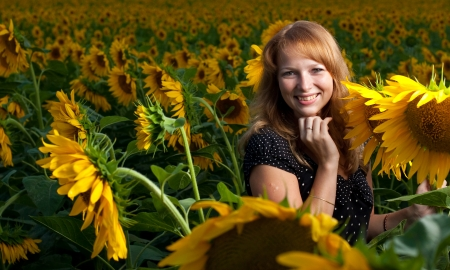 Girl in sunflowers photo