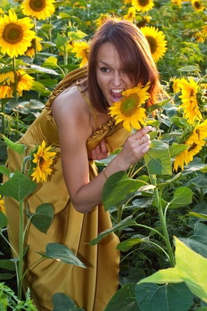 Stock Photo  Girl dressed in yellow dress at the field photo