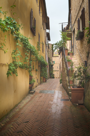 Flowery streets on a rainy spring day in a small magical village Pienza, Tuscany. 版權商用圖片
