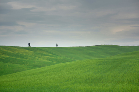 Beautiful landscape from Tuscany, Italy Stockfoto - 120734903