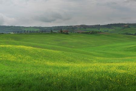 Beautiful landscape from Tuscany, Italy