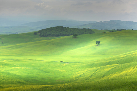 Beautiful landscape of Tuscany Stockfoto - 120724174