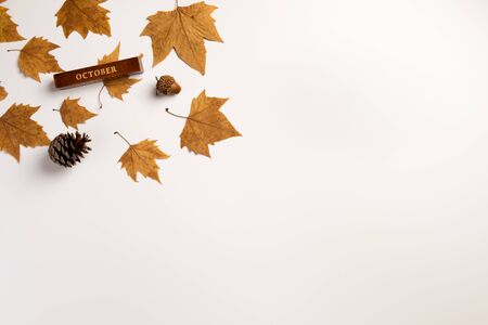 Background with colorful autumn leaves and place for text