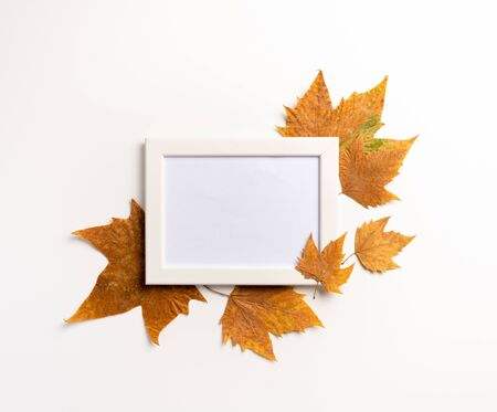 Photo frame, dried leaves on white background. Autumn, fall, concept. Golden autumn. Flat lay.