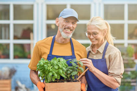 Cheerful middle aged caucasian couple with growing herbs