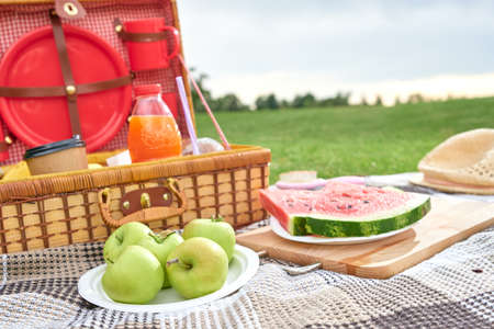 Picnic in nature. Picnic basket with fruits on checkered blanket in the green field 免版税图像