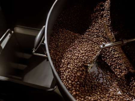 Coffee beans in cooling tray of coffee roasting machine Banque d'images