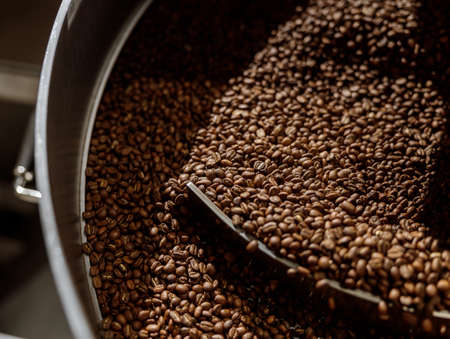 Freshly roasted coffee beans in cooling tray Banque d'images