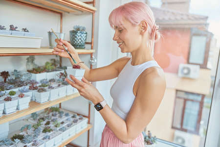 Creative woman paints exotic houseplants in green color on light balcony Banque d'images