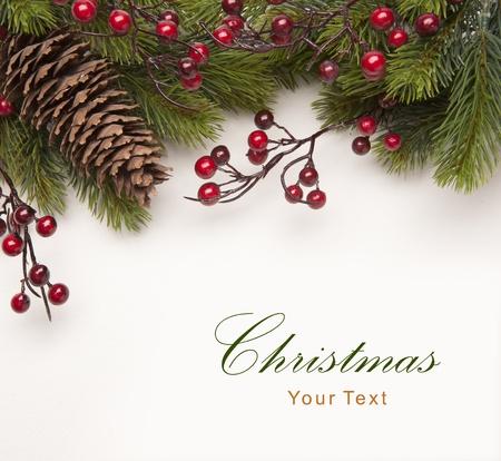 christmas tree branch: Christmas greeting card