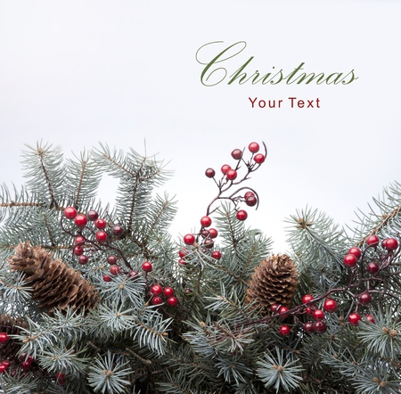fir: Christmas card