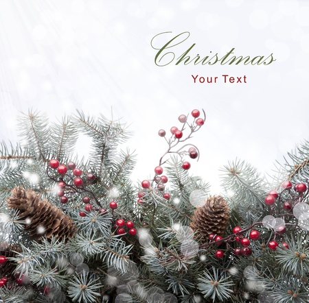 christmas berries: Cartolina di Natale Archivio Fotografico
