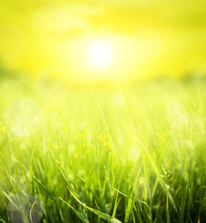 abstract summer  background Stock Photo - 10489391
