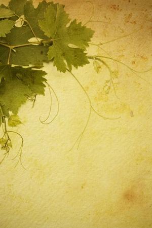 art  vintage style wine list  design Stock Photo - 10489508
