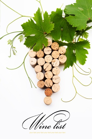 the concept design for a wine list Stock Photo - 10489405